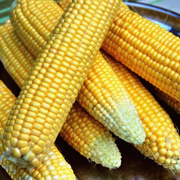 Corn On The Cob Butters